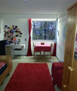 20m²-Apartment mit Neckarblick