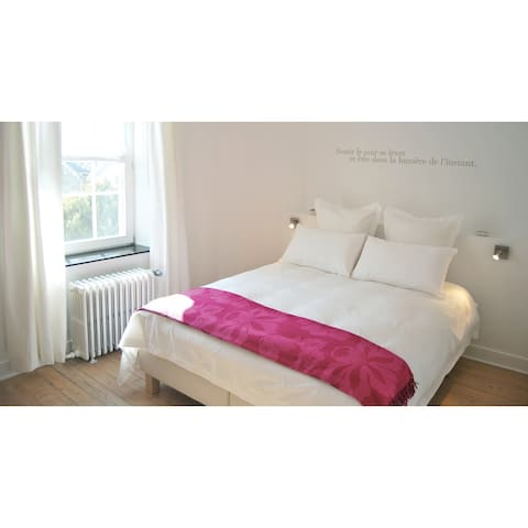 B&B ENTRE DEUX RIVES ANEMONE ROOM - Hamoir
