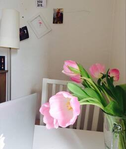 Gemütliches Zimmer in der Südstadt Marburgs - Marburg - Apartment