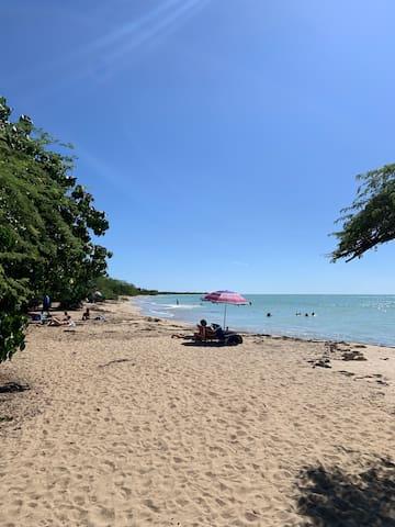 Suite en Poblado Boquerón caminas la a playa