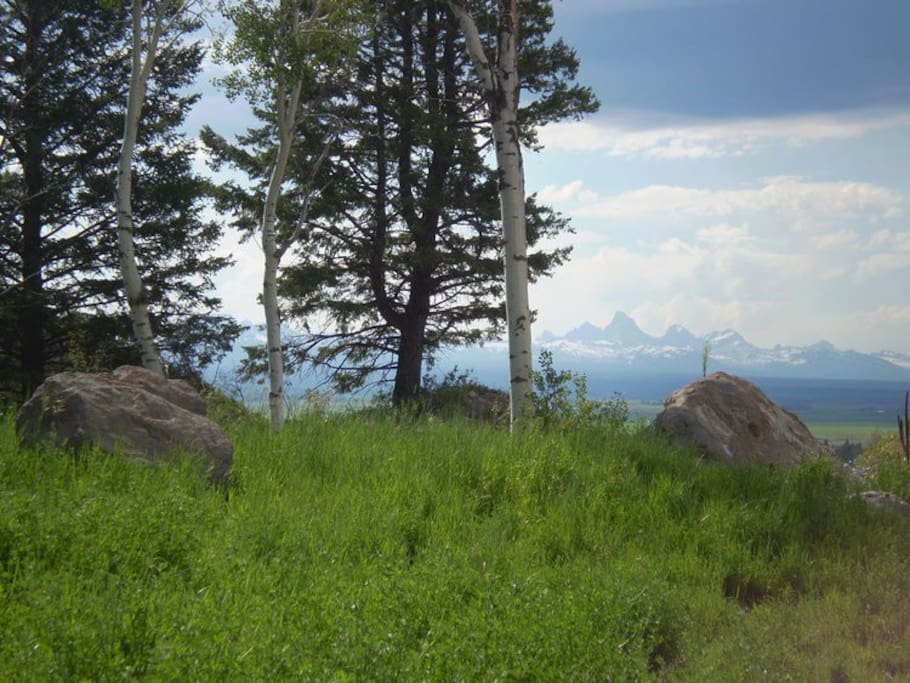 View of western slopes of the entire Teton Range from the patio and picture windows