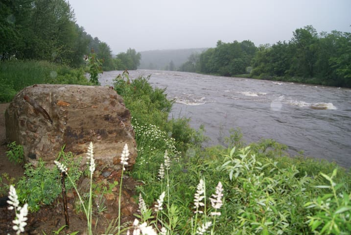 The beautiful Au Sable River is located directly across the road from your door.