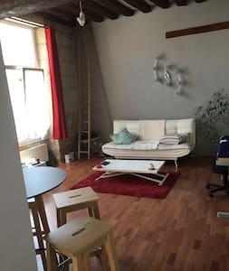 - Appartement Ancien et Atypique -