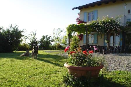 IL BRICCO - Hill, Vine & Truffle - Sciolze