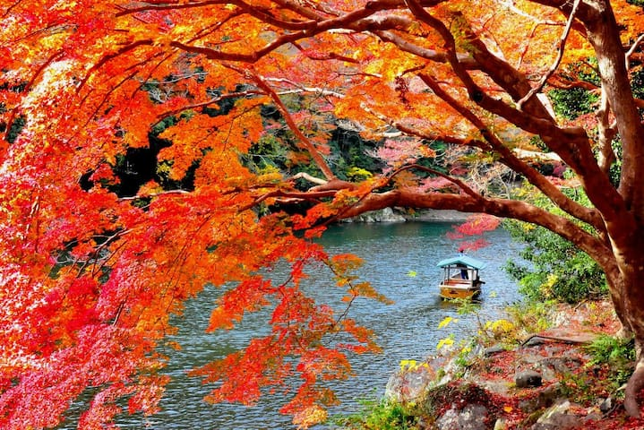 Kyoto 02 New, Typ,Cheap.3 mins sta. - Kioto