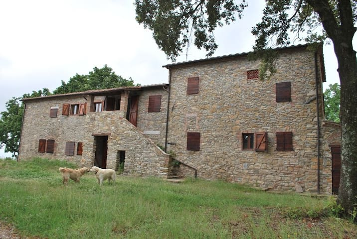 Country house with private pool and garden with bq - Castagneto Carducci - House