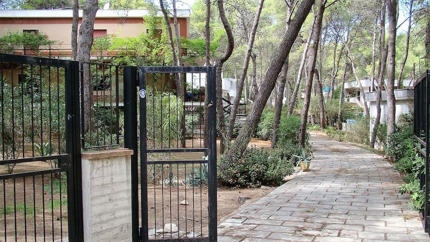 """Appartamento """"Le Cicale"""" - Castellaneta Marina - Villa"""
