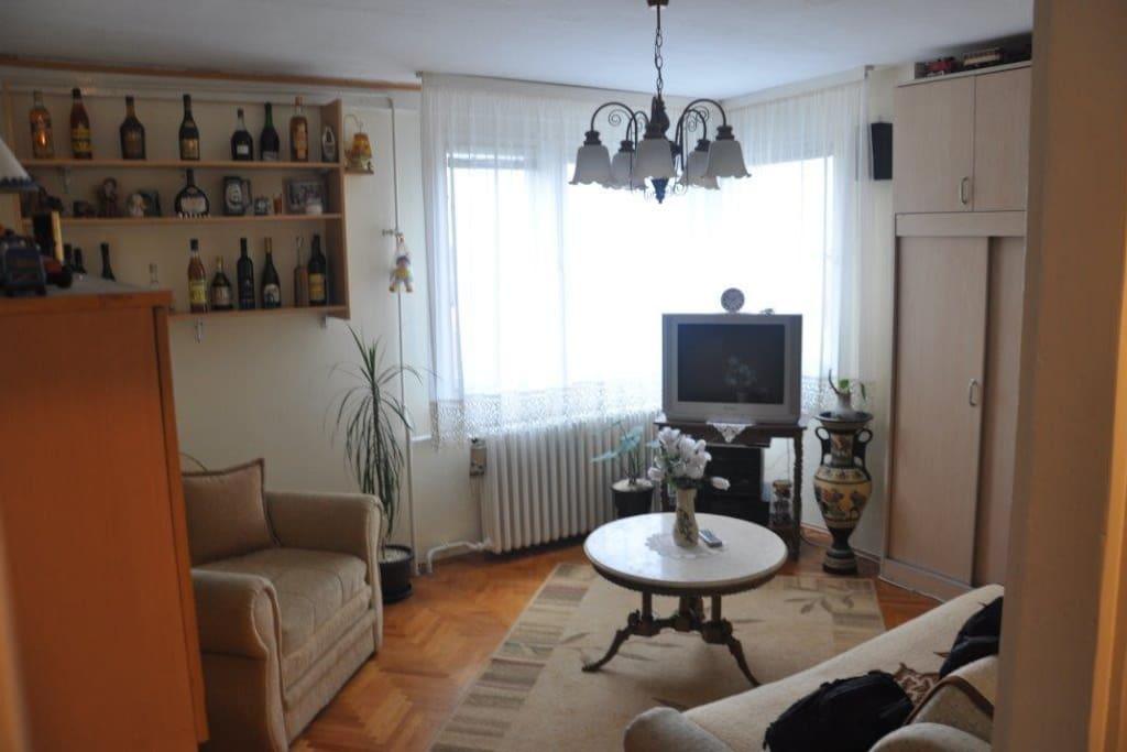 Living/ sleeping room