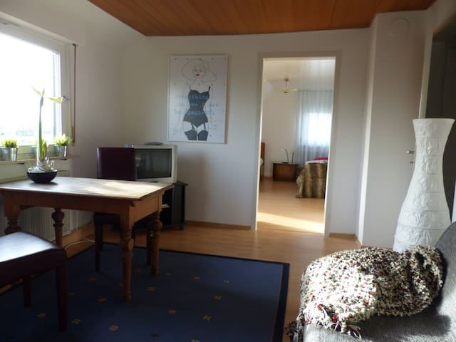 DG sunny apartment with roof terrac - Ludwigsburg - Daire