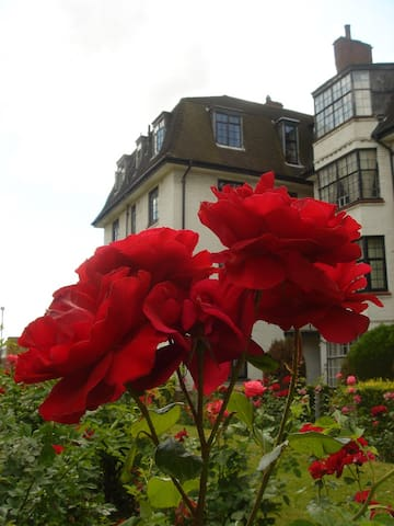 Our Top-Floor Flat from the Rose Gardens.