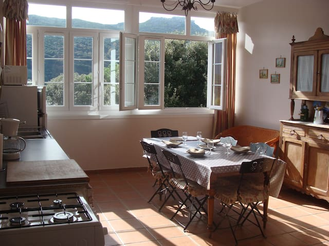 Appartement  LURI Cap Corse G1**** - Luri - Apartment