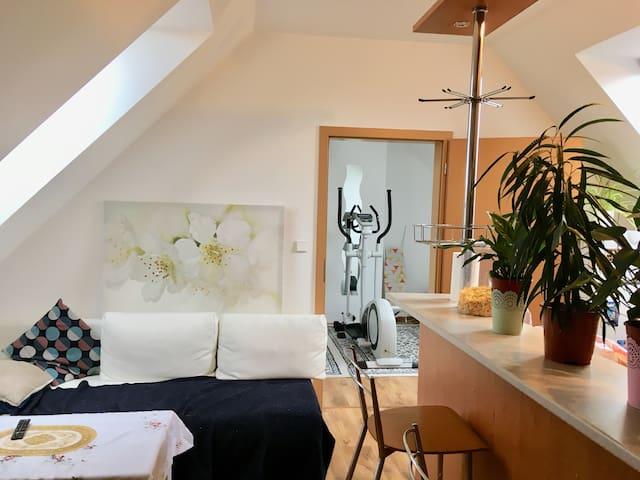 Cozy Room in West Prague