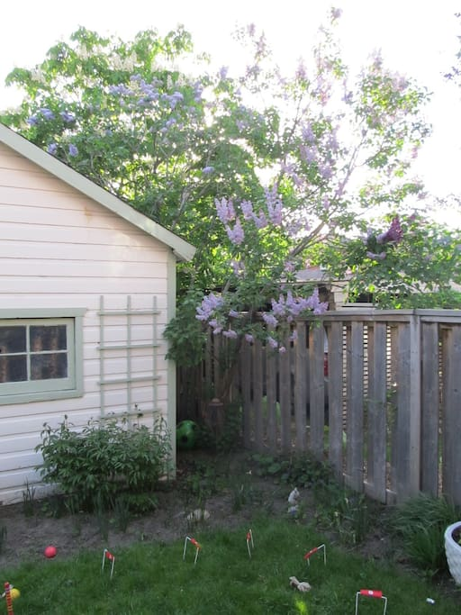 Garden in late spring, and garage