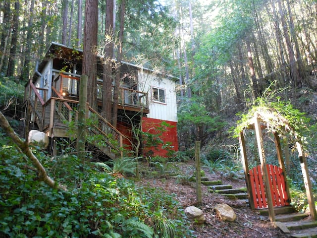 Charming cabin in the Redwoods - Monte Rio - Cabaña