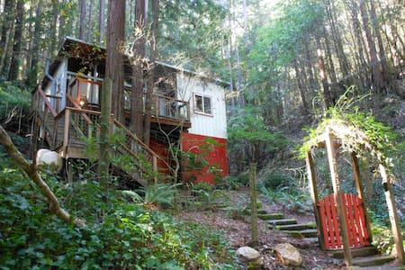 Charming cabin in the Redwoods - 몬테 리오(Monte Rio)