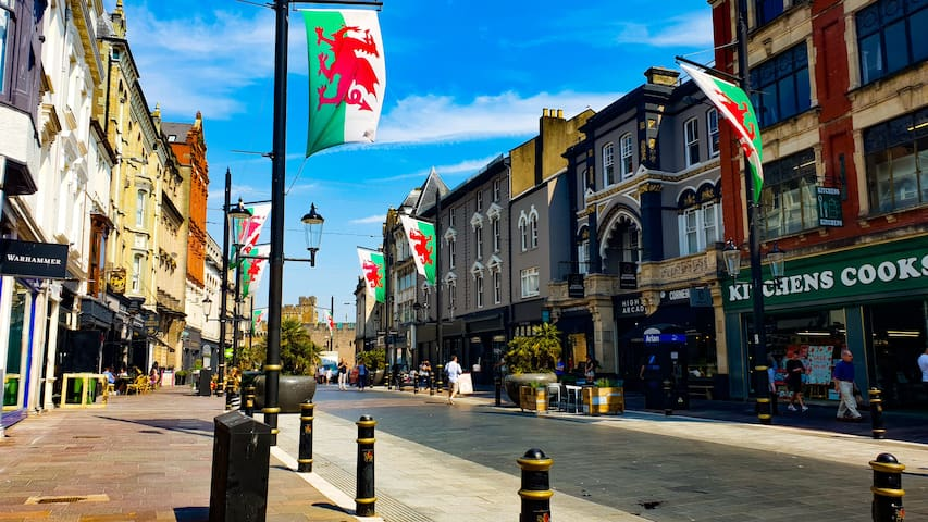 Experience Cardiff & Be Central To Top Attractions