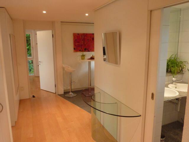 Charming, bright and modern apartment near Zurich