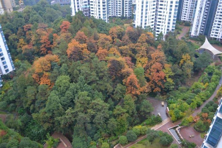 湘江畔,房间直面江景,原生密林环绕 - Zhuzhou Shi - Apartment