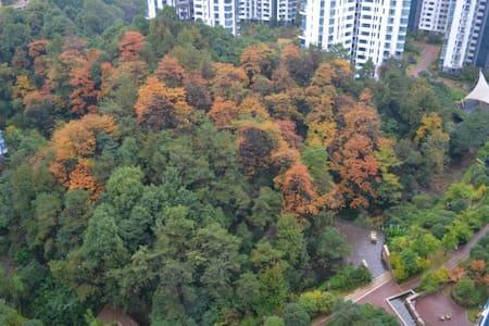 湘江畔,房间直面江景,原生密林环绕 - Zhuzhou Shi - Appartement
