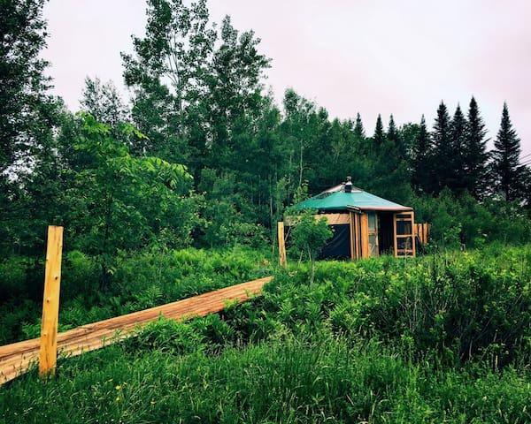View of foot bridge leading to the yurt.
