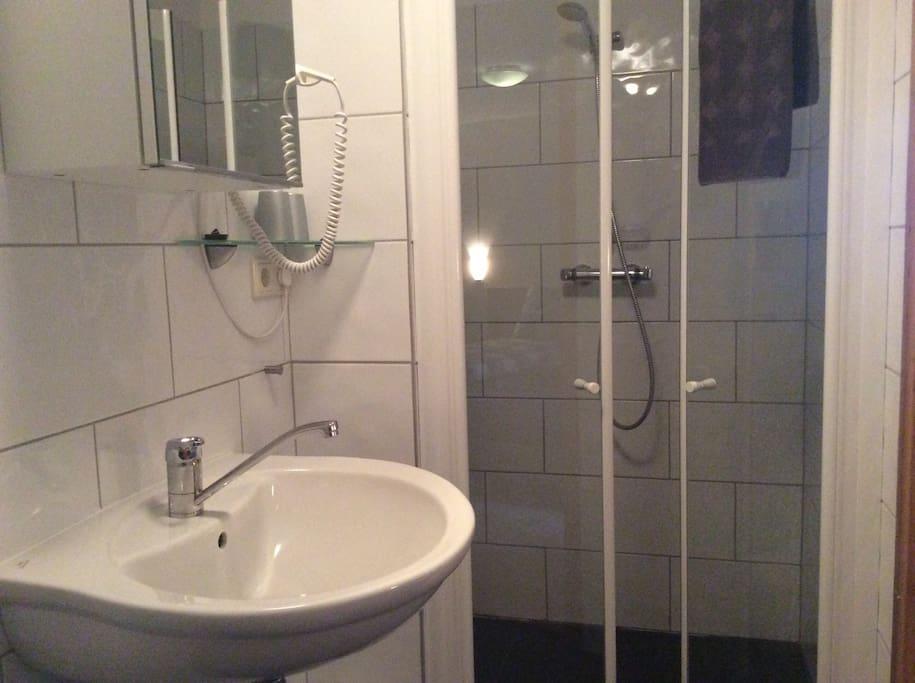 Impressie van de badkamer en suite, met douche, toilet en wastafel