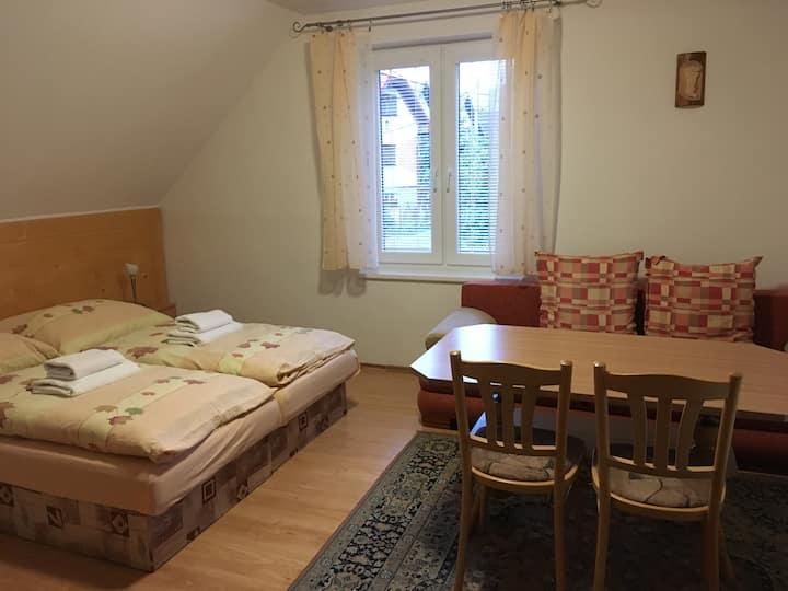 Útulný apartmán v centre Zuberca