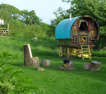 Gypsy Caravan in Somerset - Somerset