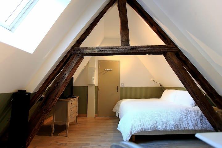 Studio Coeur de Troyes Appart'Hotel Saint-Georges