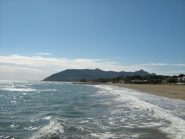 Front de mer à 100 mètres de la plage