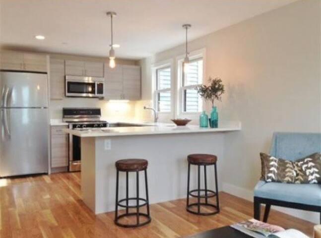 Modern, stainless steel kitchen and quartz countertop