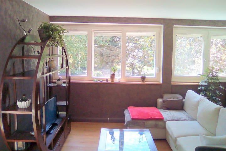 Chambre dans agréable appartement chaleureux.