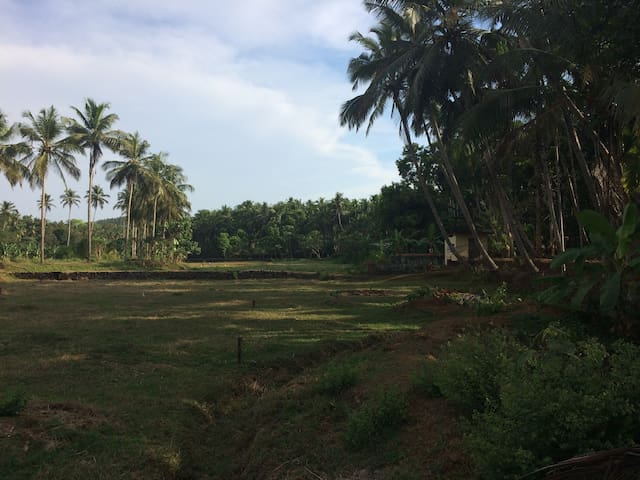 Traditional Kerala House on Organic Farm
