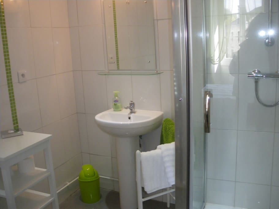 Our Verte room - Shower room en suite