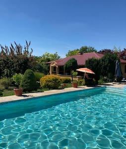 Villa Holiday  pool_jacuzzi Belgrade