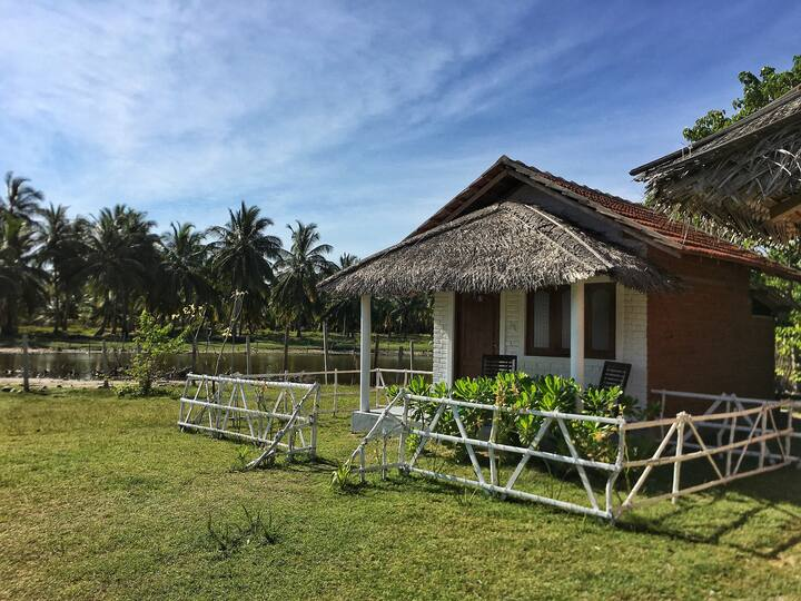 Ceylon Kite Ranch 5
