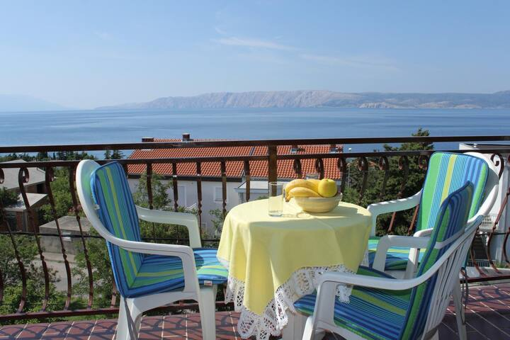 One bedroom apartment with balcony and sea view Novi Vinodolski (A-6567-c)