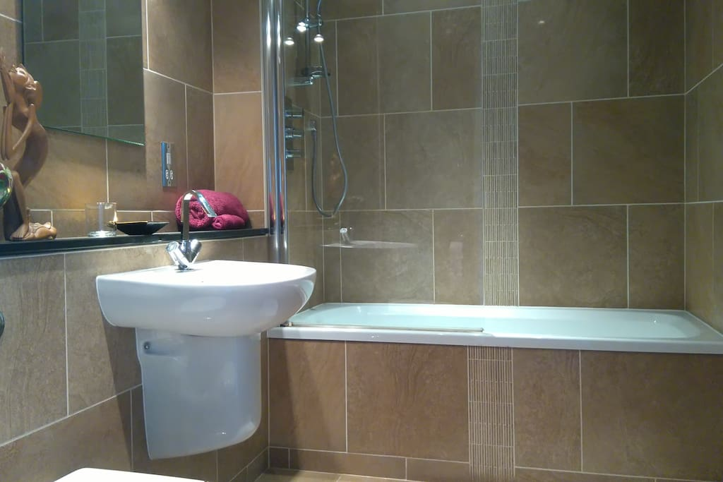 Private bathroom with bath and shower over the bath