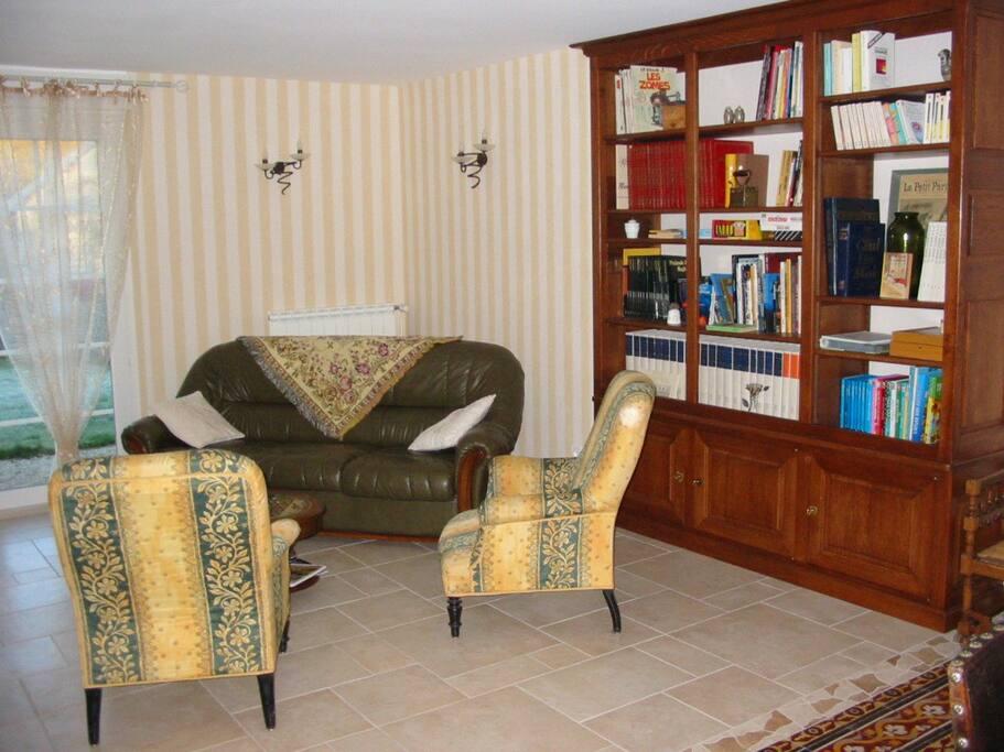 Notre salon-bibliothèque