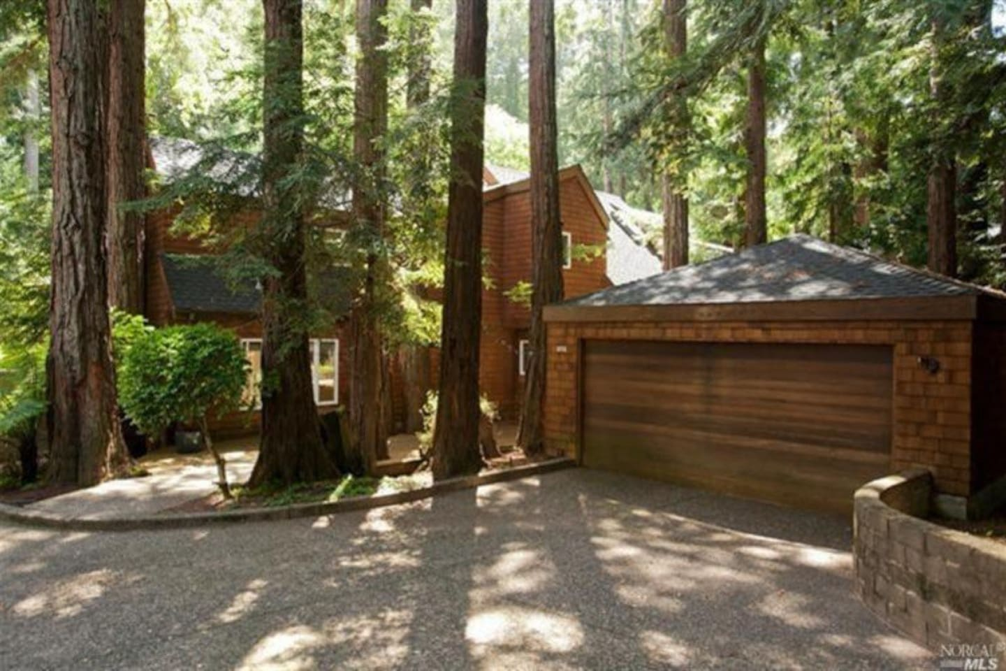 Front of house - redwoods everywhere.