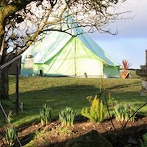 This was our starting point 'Apple' our 1st belle tent who was cruelly battered by storm Doris :(