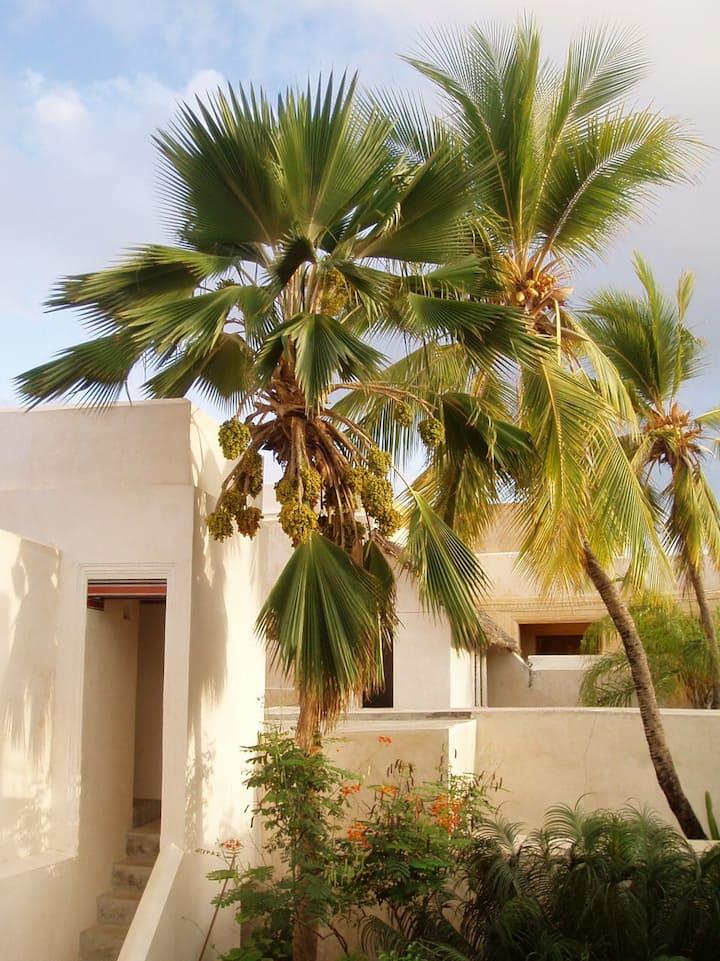 The White House, Lamu