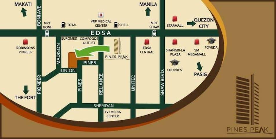 Ruel FF Studio Unit near Boni stn Mandaluyong.