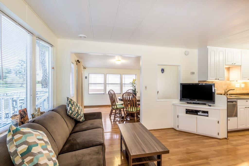 Living room with entertainment center, queen size sleeper sofa, cable TV & internet