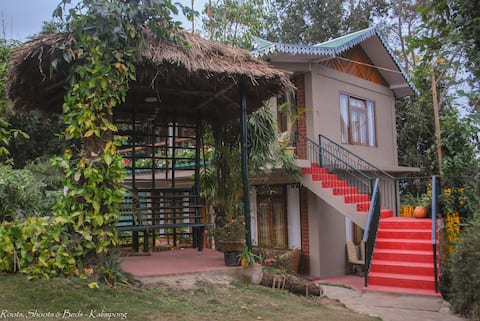 Roots, Shoots & Beds, Boutique Homestay