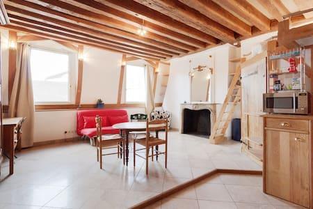 Artist's loft on Saint-Louis island - Paryż - Apartament