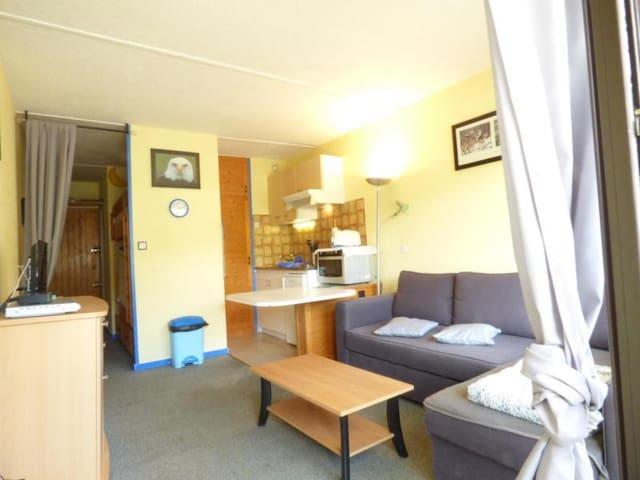 Appartement studio cabine 4 couchages LA PIERRE ST MARTIN