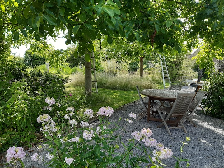De Kerselaar -Vakantiewoning met ecologische tuin