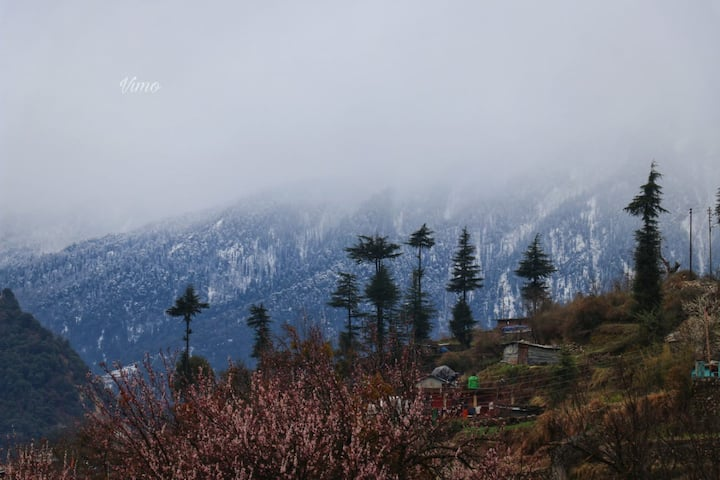 Cozy Getaways of Uttarkhand#HMUTD001