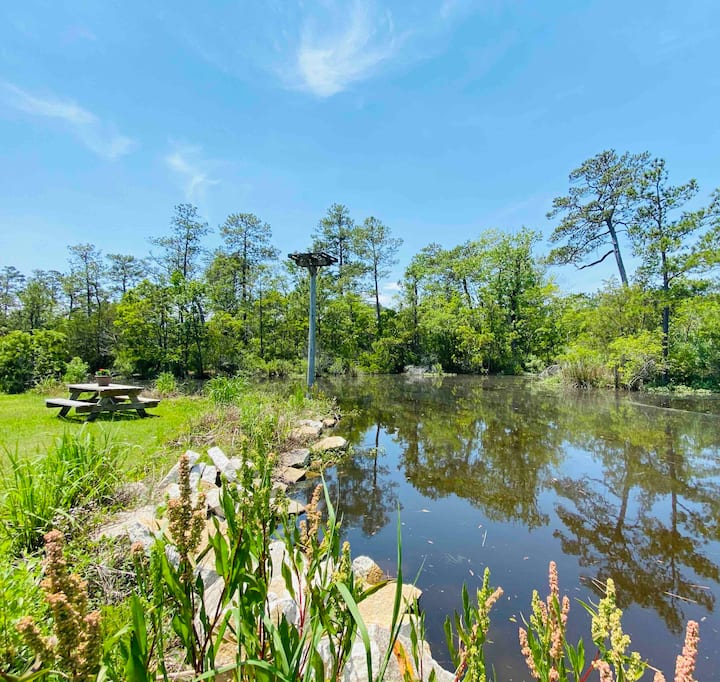 ==Guest House, FREE KAYAKS ON WATER + Firepit