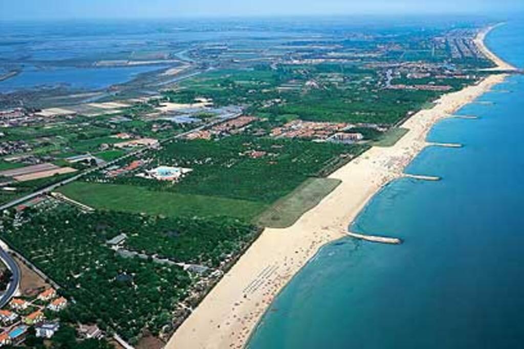 green area beaches